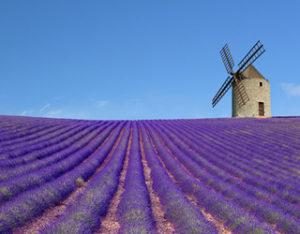 Provence en vélo