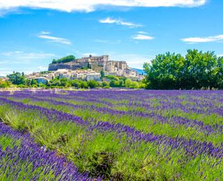 La Provence en vélo