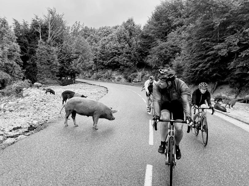 Routes corses à vélo